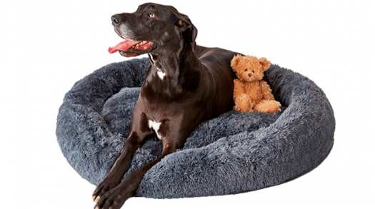 Pupnaps: a calming dog bed that anxious pups love